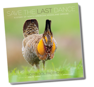 Save the Last Dance Book