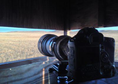 Prairie-chicken photo blind