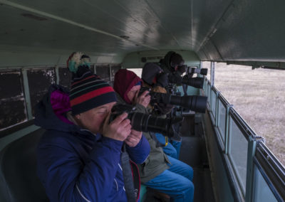 Sharp-tailed grouse viewing/photoshooing area
