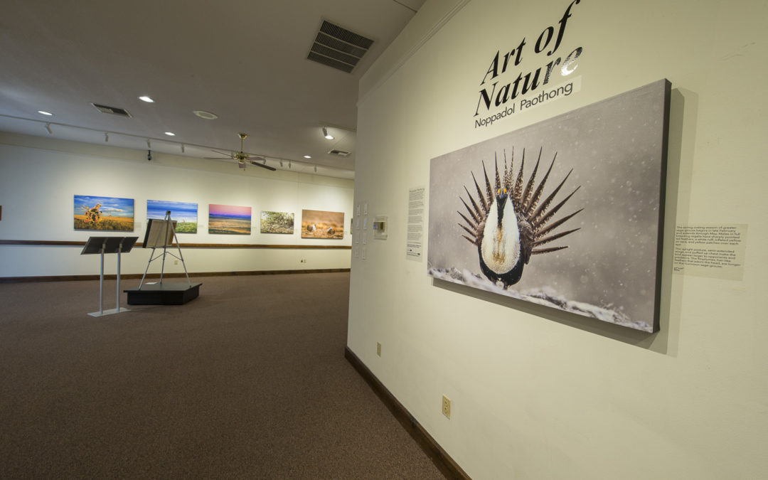 Exhibit at the Boone County History & Culture Center